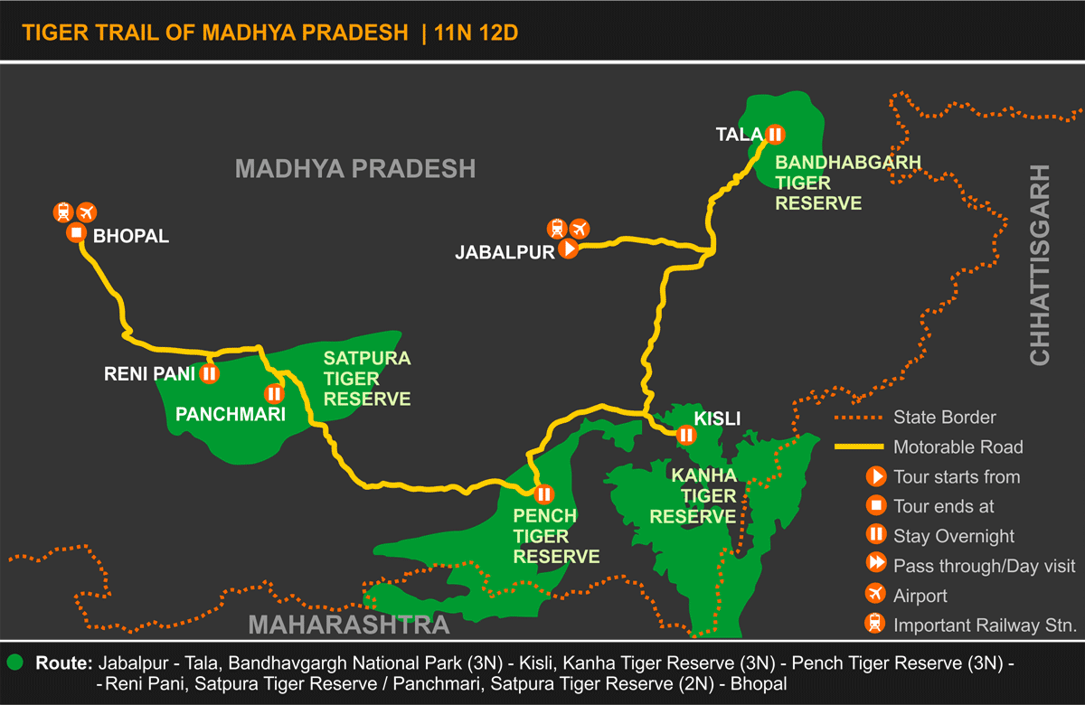 Tiger Trail of Madhya Pradesh Tour Itinerary